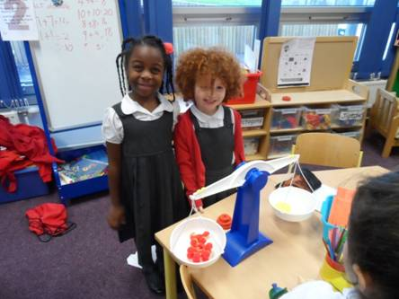 Y1S experiment by estimating weights of things  that balance using our new scales.